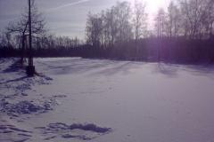 Sneeuw2_31_01_2010