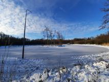Winter-2021